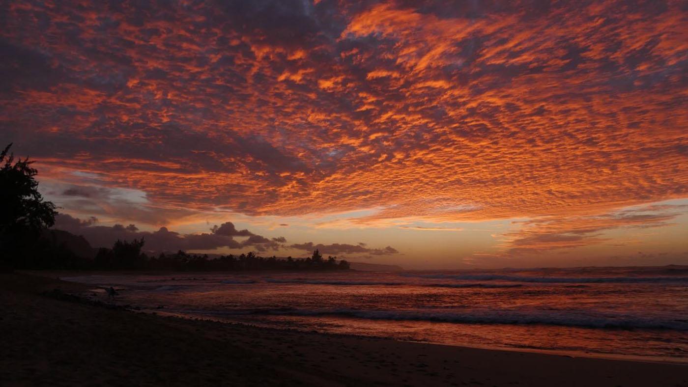 Em breve, o tsunami irá passar e juntos voltaremos a surfar tranquilamente.
