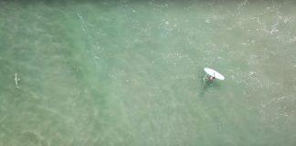 Surfando com tubarões
