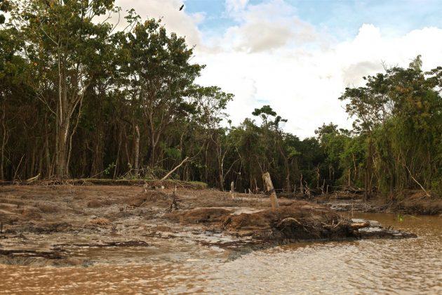 Aspectos da destruição nas margens do Araguari, Pororoca do Rio Araguari (AP). Foto: Alberto Alves.