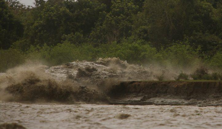 Onda da Pororoca atingindo lateralmente uma das margens do Araguari, Pororoca do Rio Araguari (AP). Foto: Toninho Jr..