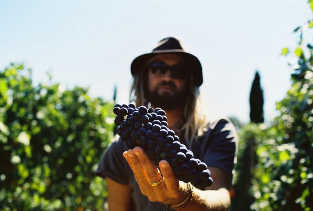 Chris Del Moro apresenta os vinhedos sustentáveis da Itália no filme Bella Vita.