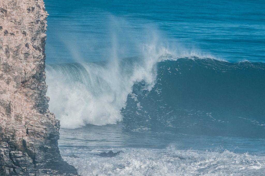 Janela de espera do Punta de Lobos por Siempre vai de 15 de março a 15 de julho.