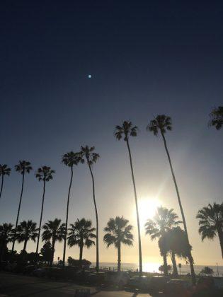 Projeto Rekombinando, Califórnia (EUA). Foto: Arquivo pessoal.