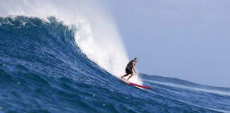 O surfe é um bom negócio?