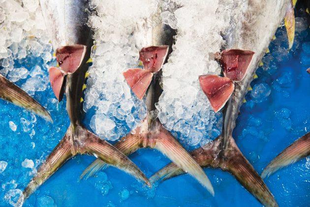 Peixaria havaiana. Foto: Claudia Laudissi.