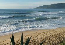 Praia do Morro das Pedras, Florianópolis (SC)