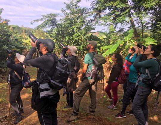 Vem Passarinhar Saquarema. Foto: Divulgação.