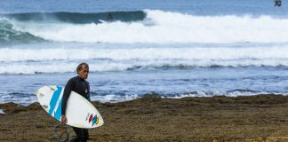 Curren no The Search