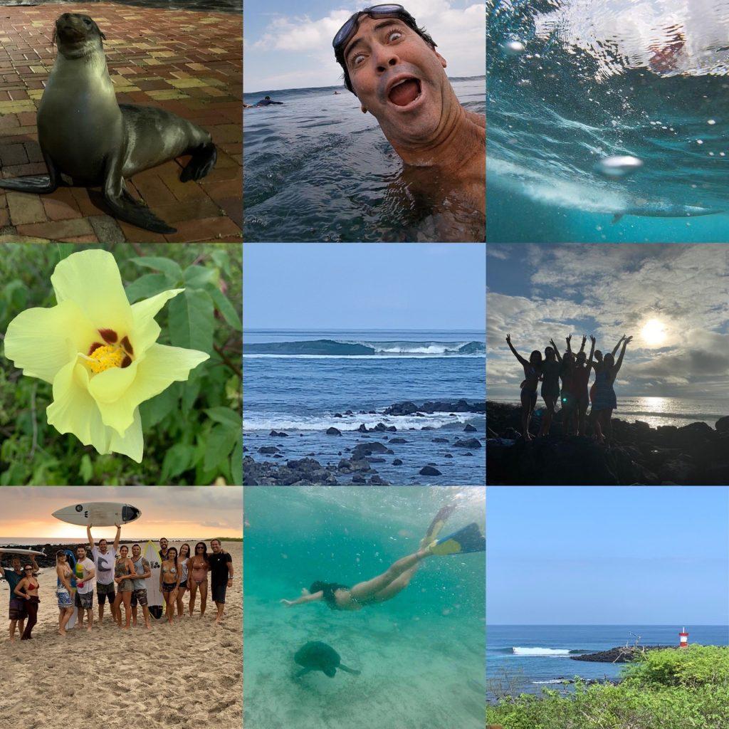 Recortes de Galápagos.