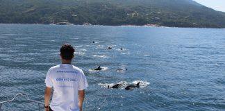 Argonauta celebra projeto