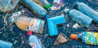 Plástico contamina o mar