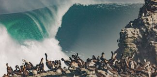 Big riders duelam no Chile