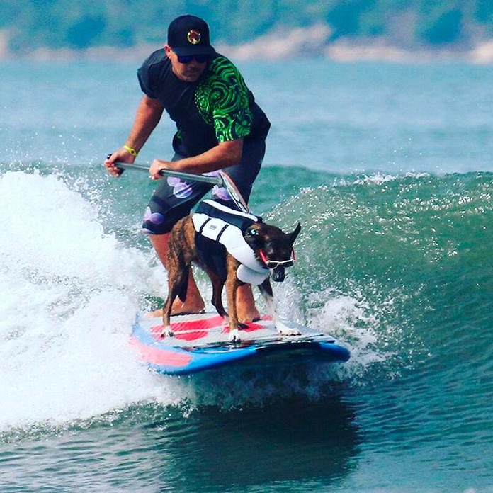 Dupla de Santos, Augusto Martins e cão Parafina estão confirmados na primeira edição virtual do Surf Dog 2020.