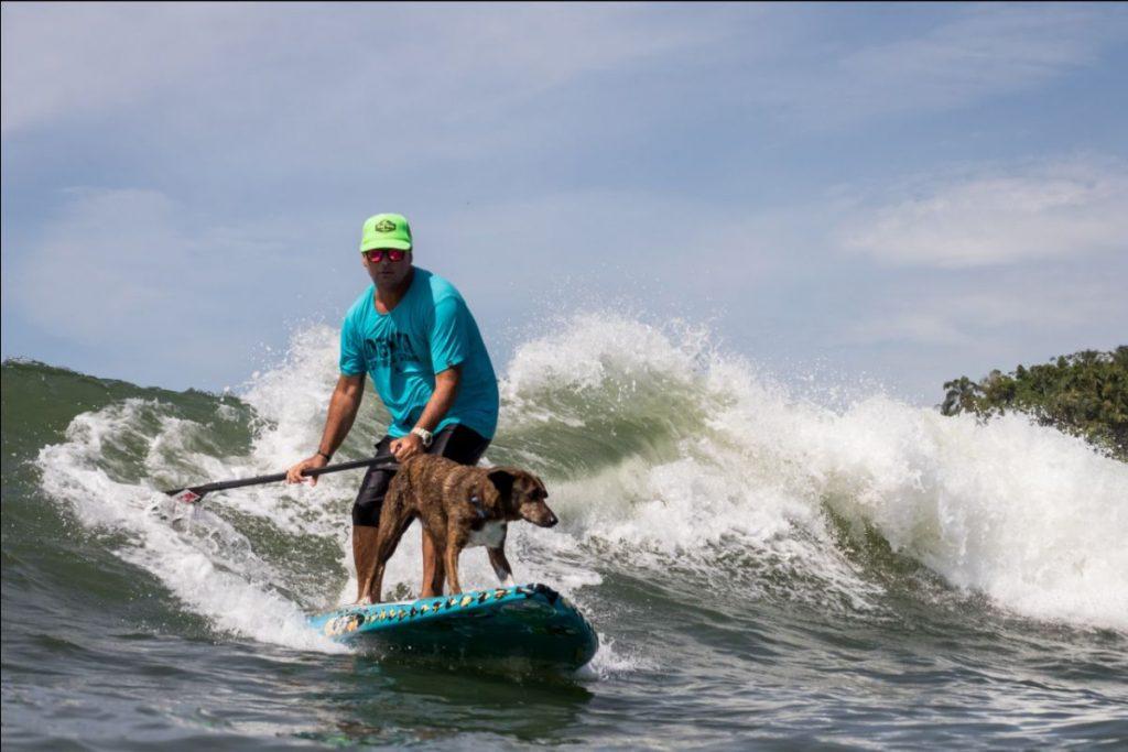 """Parafina esbanja estilo com o parceiro Augusto Martins: modalidade """"Surf Dog"""" está crescendo em todo o mundo."""