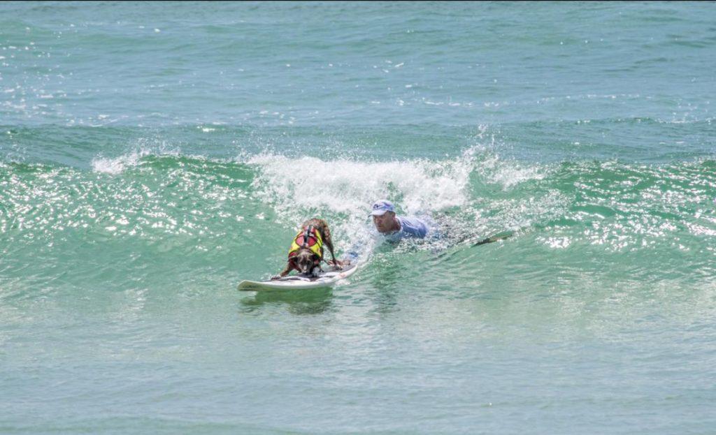 Augusto Martins empurrando seu parceiro Parafina, que saiu com dois vice-campeonatos na competição.