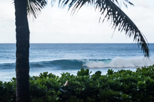 Jeremy Flores, Billabong Pipe Masters 2020, North Shore de Oahu, Havaí. Foto: WSL / Heff.