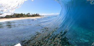 Ensaio sobre o reef