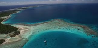 Pela preservação dos oceanos