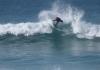 Surfe liberado