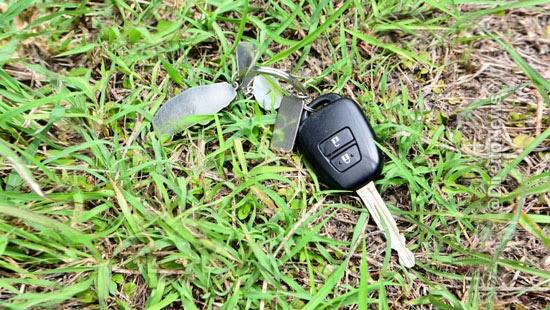 Esconder chave na vegetação não é mais motivo para seguradores não pagarem apólice.
