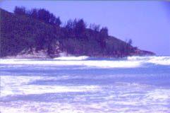 Da Hui retoma campanha de limpeza nas praias