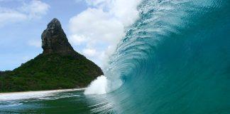 Surfista mordido por tubarão