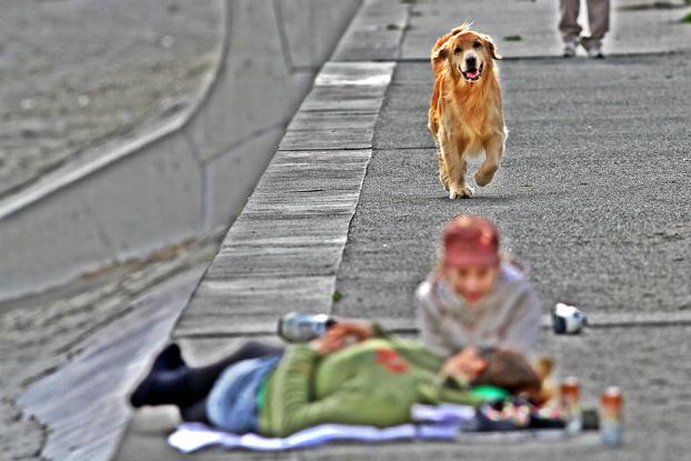Fukushima, Japão. Foto: Tato Bonfim.