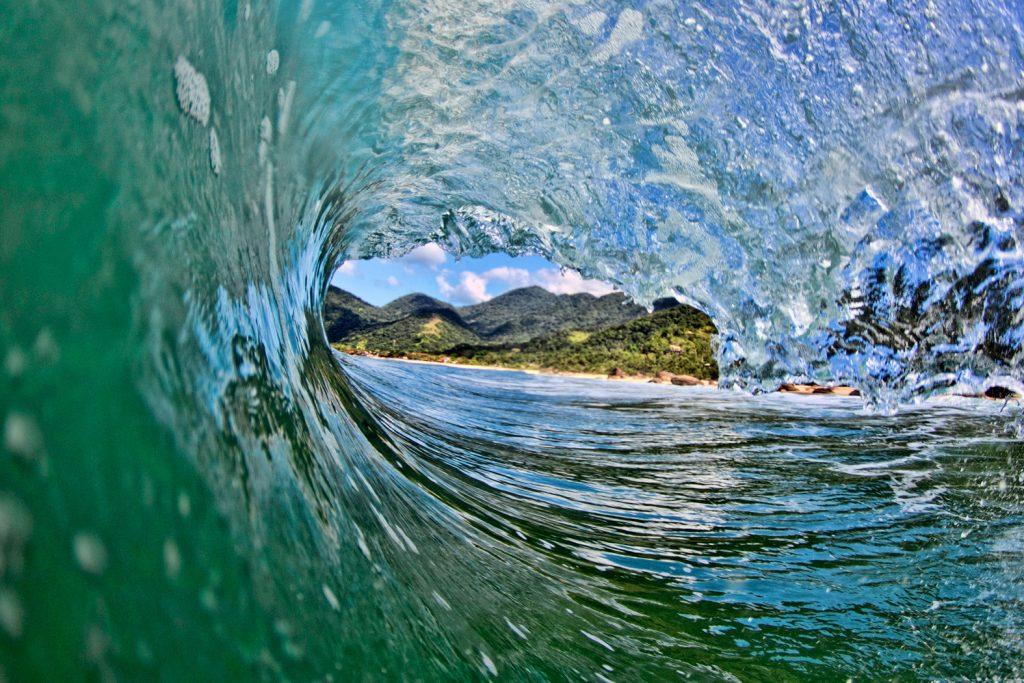 A Mata Atlântica é o bioma brasileiro mais próximo do oceano.